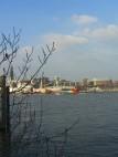 Blick vom Theater auf den Hamburger Hafen